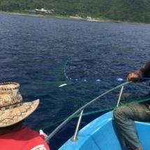 Tao flying fish season on the sea
